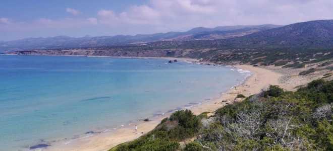 Виртуальное посещение черепашьего пляжа Лара Бич