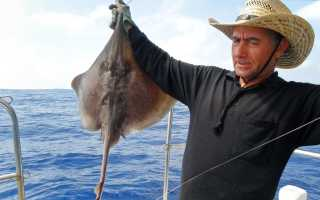 Особенности морской и пресноводной рыбалки на Кипре