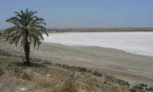 Соленое озеро в Ларнаке