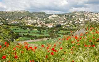 Растения Кипра