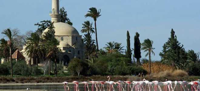 Мечеть Хала Султан Текке на Соленом озере