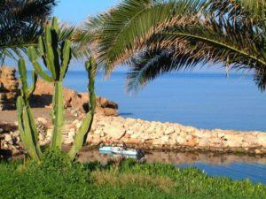 Первый месяц осени в Пафосе