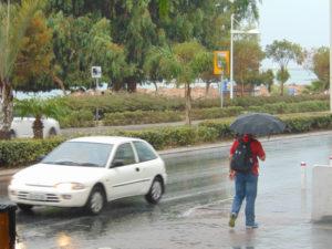 Дождь в ноябре большая редкость
