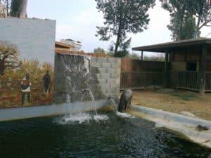 Зоопарк в Муниципальном парке