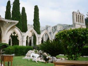 Яркий пример готической архитектуры своей эпохи.