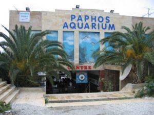 Пафос аквариум