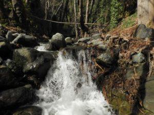 Бурный поток в феврале